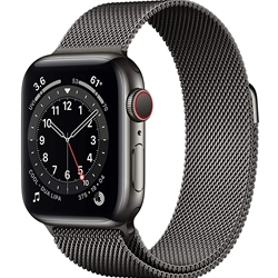 Apple Watch 6 GPS+Cellular 40mm Stainless Steel Case with Milanese Loop Band